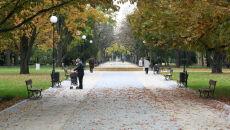 Złota jesień w listopadzie trwa. Nawet 8 stopni i dużo słońca