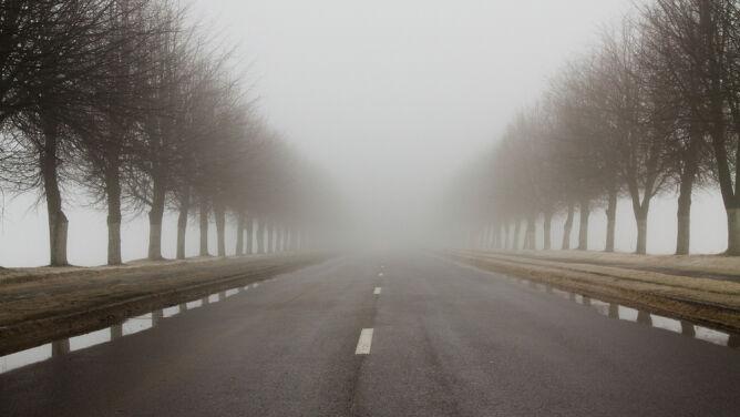 W kilku regionach pojawiły się mgły