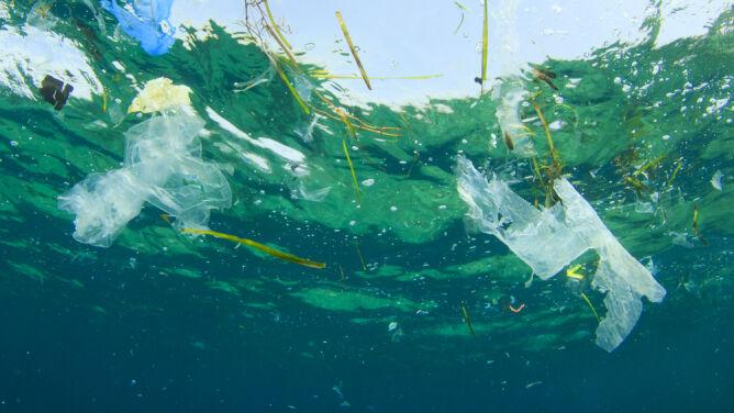 """Morze Śródziemne pełne śmieci. """"Ludzie muszą wiedzieć, że pływają w plastiku"""""""